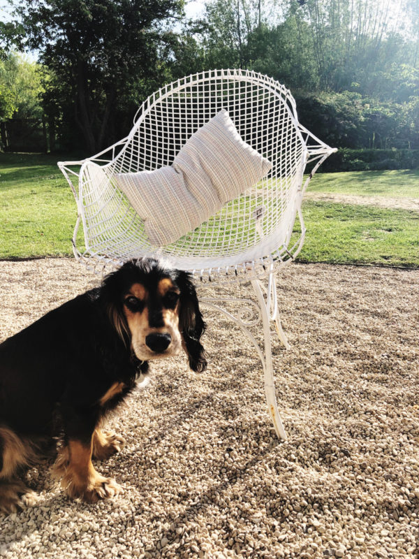 set of 4 white vintage wire frame indoor /outdoor chairs